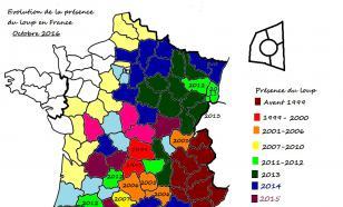 Loup: guerre de tranchées autour des données de l'ONCFS